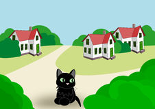 Three Houses and a Cat Stock Image