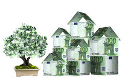 Three houses from euro banknotes and money tree. In pot.  Isolated on white background Stock Images