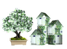 Three houses from euro banknotes and money tree Royalty Free Stock Photography