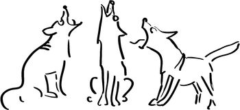 Three howling dogs Stock Photography