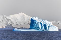 Three huge blue icebergs drifting across the sea in the middle o Royalty Free Stock Images