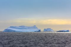Three huge blue icebergs drifting across the sea in the middle o Royalty Free Stock Photo