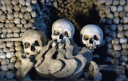 Three Human Skulls Stock Photography