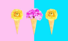 Three ice cream cone with flowers over pink blue colorful Royalty Free Stock Photography