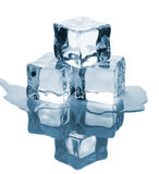 Three ice cubes with reflection Stock Photography