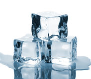 Three ice cubes with reflection Stock Image