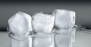 Three ice cubes with reflection Royalty Free Stock Photo