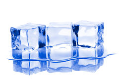 Three ice cubes with water Stock Photos