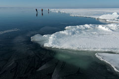 Three ice skaters. Scandinavian ice skaters on a large frozen lake Stock Photos