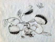 Carnivorous plants hunting vector illustration