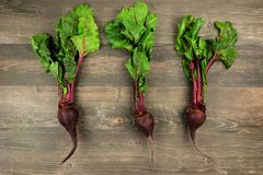 Three individual beetroots with leaves over rustic wood. Three individual beetroots with leaves against a rustic wood background stock photo
