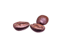 Three isolated coffee beans on white background Royalty Free Stock Photo