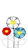 Three isolated colorful bloomed flowers Royalty Free Stock Image