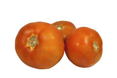 Three Isolated Red Tomatoes on White Background Royalty Free Stock Photos