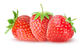 Three isolated strawberries royalty free stock photography
