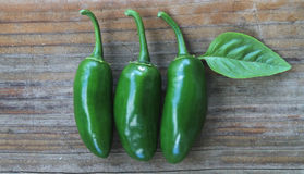 Three Jalapeños on rustic wooden background Stock Image