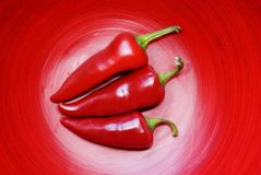 Three Jalepeno Peppers Stock Image