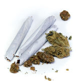 Three joints and pot buds Royalty Free Stock Image