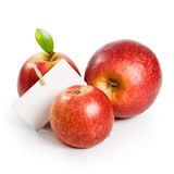 Three Jonagold Apples Royalty Free Stock Images