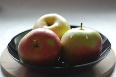 Three juicy apples with water drops. In a black bowl, beautiful, mouthwatering, three-dimensional image stock photo