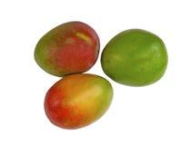 Three juicy Mangoes Stock Photography