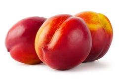 Three juicy nectarine. Isolated on white background Stock Images