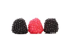 Three jujube colored balls Stock Photos