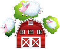 Three jumping sheeps Stock Photography