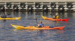 Three kayak rowers Stock Images