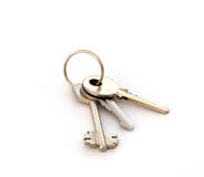 Three keys on a ring. Copula of the keys on a white background Stock Image