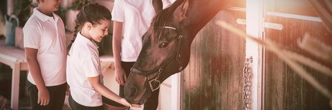 Three kids feeding the horse in stable royalty free stock images