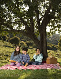 Three kids picnic. Three kids having a picnic under a big tree Stock Images