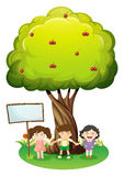 Three kids standing under tree with signboard Stock Photography