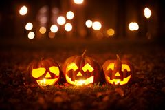Three Kind Halloween Pumpkins in the park Royalty Free Stock Photography