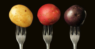 Three kind of potatoes Royalty Free Stock Photo