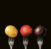 Three kind of potatoes Royalty Free Stock Photography