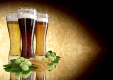 Three kinds of beer, barley, hops - 3D render Stock Images