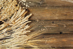Three kinds of cereals - rye, wheat, oats on a wooden background Stock Image