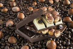 Three kinds of chocolate, coffee beans, hazelnuts Stock Photography