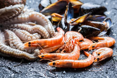 Three kinds of fresh seafood Royalty Free Stock Photography