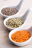 Three kinds of lentil in bowls Royalty Free Stock Photo