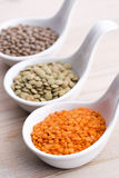 Three kinds of lentil in bowls Royalty Free Stock Photos