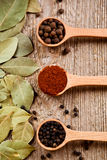 Three kinds of pepper and bay leaves Royalty Free Stock Photo