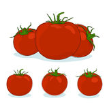 Three kinds red tomato Royalty Free Stock Image