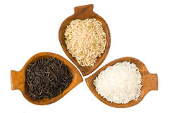 Three kinds of rice royalty free stock images