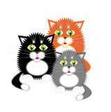 Three kittens. Small funny kittens. Red, black and gray Royalty Free Stock Photos