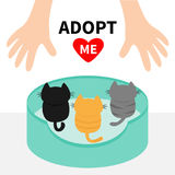 Three kittens looking up to human hand. Cat bed. Adopt me.. Animal hug. Cute cartoon funny character. Red heart Helping hands concept Love card Flat design Royalty Free Stock Images
