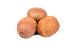 Three kiwi fruit Stock Photography