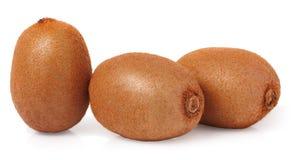 Three kiwi fruit on white isolated background Royalty Free Stock Image