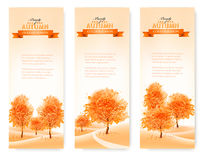 Three landscape autumn banners. Stock Image